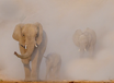 Art Wolfe and Dr. Samuel Wasser: Saving the Wild Elephants, TRT 1:09  recorded 1/29/20